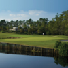 A view of green #5 at Palmer from Saddlebrook Golf & Tennis Resort