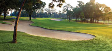 A view of the 1st green at Innisbrook Resort &amp; Golf Club - Copperhead Course